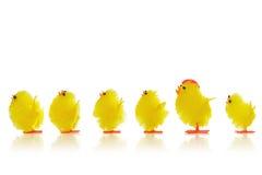 Poussins de Pâques dans une ligne Images stock