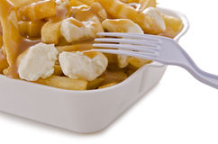 Poutine Stock Photo