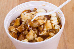 Poutine canadian meal Royalty Free Stock Images