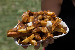 Poutine stock photography