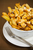 Poutine Meal Royalty Free Stock Photography