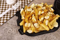 Poutine in a takeout container. Cooked with french fries, gravy and curd cheese. royalty free stock photo