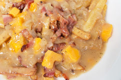 Poutine with yellow cheddar cheese and bacon Stock Photo