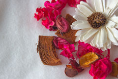 Poutpourr coloreado salud Foto de archivo libre de regalías