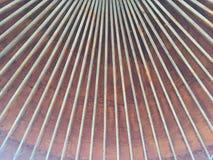 Poutrelles rondes de plancher de maison Image libre de droits