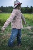 ?pouvantail dans le domaine de riz a fait pour garder les champs photographie stock libre de droits