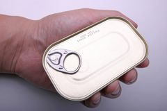Pouvez de la sardine à disposition Photo stock