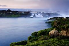 pouvoir de nature Photo stock