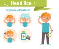 Poux de tête Symptômes et traitement Images stock