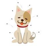 Poux et chien languissant Image libre de droits