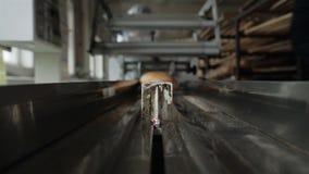 POV传送带 在工厂上添面包 股票录像