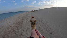 POV που οδηγά μια καμήλα απόθεμα βίντεο