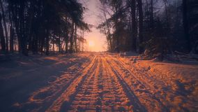 Pov снял медленно двигая проходить на окруженный путь сельской местности заходом солнца леса зимы изумляя акции видеоматериалы