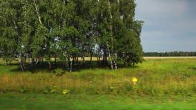 POV: Beweegt langs geel landbouwgebieden en bos bij bewolkt weer in Altai, Rusland stock video