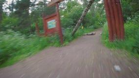 POV Biking en el parque después de una tormenta violenta metrajes