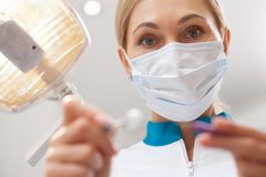 Professional dentist working at his dental clinic royalty free stock photography