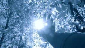 POV della mano dell'uomo che la muove in aria, tramite le dita attraverso i raggi archivi video