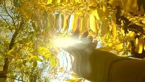 POV della mano dell'uomo che la muove in aria, tramite le dita attraverso i raggi del sole stock footage