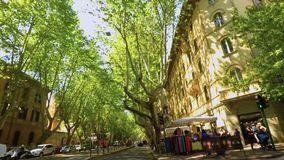 POV die een fiets in een mooie tree-lined weg van Rome FDV berijden stock footage