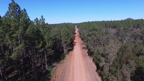 POV Driving along dirt road to treetop aerial. View along dirt road rising to tree top aerial or track in outback rural Australian mountain ranges from native stock footage