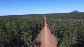 POV Driving along dirt road to treetop aerial. View along dirt road rising to tree top aerial or track in outback rural Australian mountain ranges from native stock video