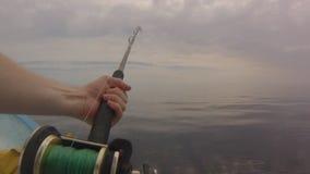 POV fisherman fishing. Fisherman POV fishing with fishing pole on a boat catching and recovering a big Mahi Mahi fish, Coryphaena Hippurus, in Baja de los stock video footage