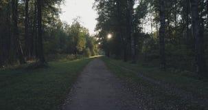 Pov går skottet i löst parkerar i september på solnedgången Royaltyfri Fotografi