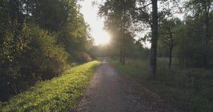 Pov går skottet i löst parkerar i september på solnedgången Royaltyfri Bild