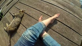 Girl`s legs and lying cat on the surface of old wooden planks. Top view. stock footage