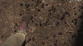 POV la vue des yeux vers le bas sur un homme marchant dans le pantalon et les bottes bruns avec les dentelles rouges par les bois clips vidéos