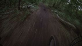 Bike ride along a path at dusk stock video