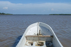 POV from panga boat on river Royalty Free Stock Image
