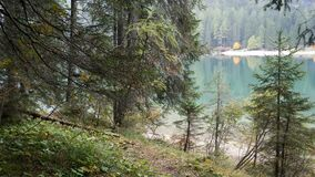 POV shot of person walking in mountain woods. POV, first person point of view, shot of person walking in mountain woods in autumn then seeing Braies Lake or stock video