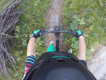 POV still of Mountain biker cycling in nature Royalty Free Stock Photo