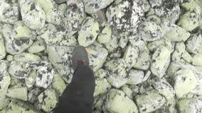 POV trekking in Norway. POV handheld trekking over rocks in Norwayn stock video