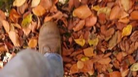 POV van voeten in laarzen die door bos lopen stock videobeelden