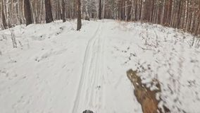 Pov view. Handheld gimbal stabilization. Professional extreme sportsman biker riding a fat bike in outdoors. Cyclist