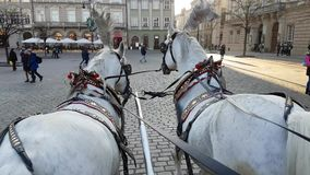 Pov view of riding two horse carriage around main square in old city centre stock video