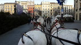 Pov view of riding two horse carriage around main square in old city centre stock video footage