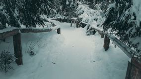 POV walk along mountain forest trail in the snow. POV walk along mountain forest trail stock video footage