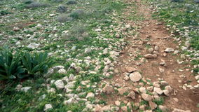 POV Walking on soil countryside road with rocks and green grass. Top view. Freedom carefree concept stock footage