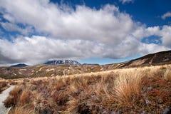 Pover landschap in het Nationale Park Tongariro Royalty-vrije Stock Fotografie