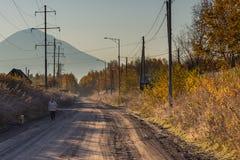 Povere costruzioni di legno, pedone e cane sulla strada, Kozyriewsk, Russia immagine stock