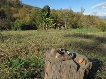 Povere scarpe del ` s dell'agricoltore in Pai Immagini Stock Libere da Diritti