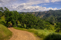 Poverty Flat Road, Henry Coe State Park Stock Photo
