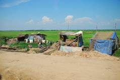 Poverty huts with green paddy field. Worker's poverty huts with green paddy field Royalty Free Stock Photos