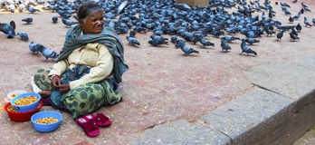Poverty. A Nepali woman feeds the pigeons in Durbar Square, Kathmandu, Nepal Royalty Free Stock Images