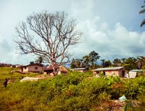 Poverty and unsanitary conditions in Africa. Liberia, West Africa. The poor mud-brick houses of local village people in Africa. Liberia, West Africa. Dirt and Royalty Free Stock Photos