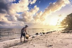 Poverty woman picks up seaweed along the beach in Bali, indonesia stock photos