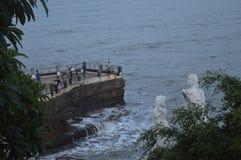 Povos da árvore da natureza do ponto do piquenique do mar do litoral Fotografia de Stock